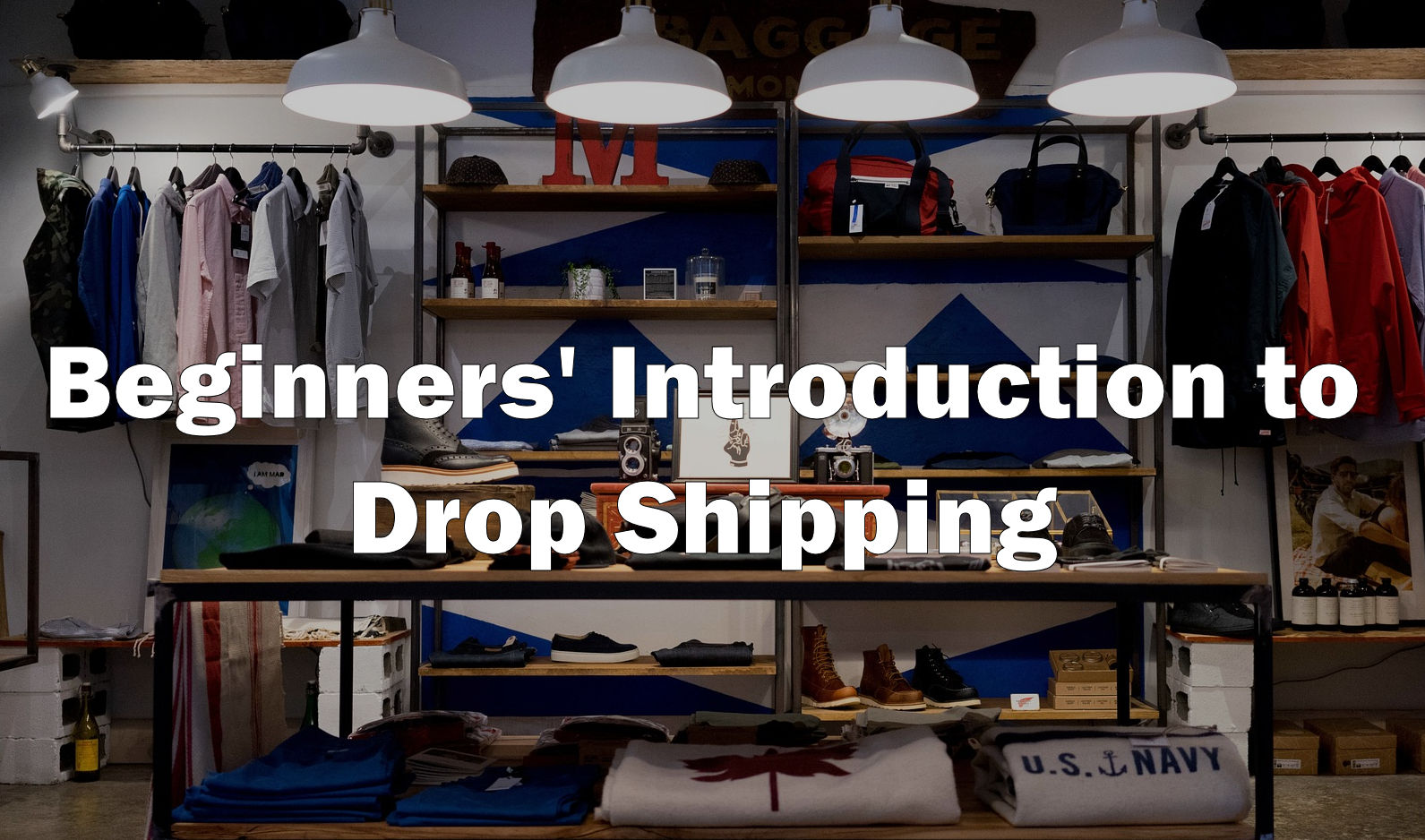 beginners intro to dropshipping