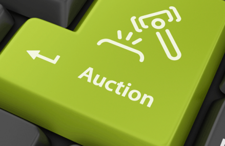 Online Auctions as a Source of Extra Income