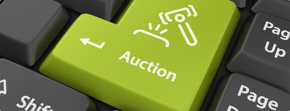 online auctions extra income